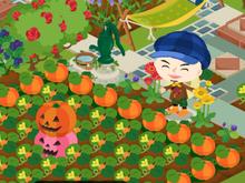 chocobanditz blog☆キャラ好チョコ好ゴシック好-HWのかぼちゃ畑