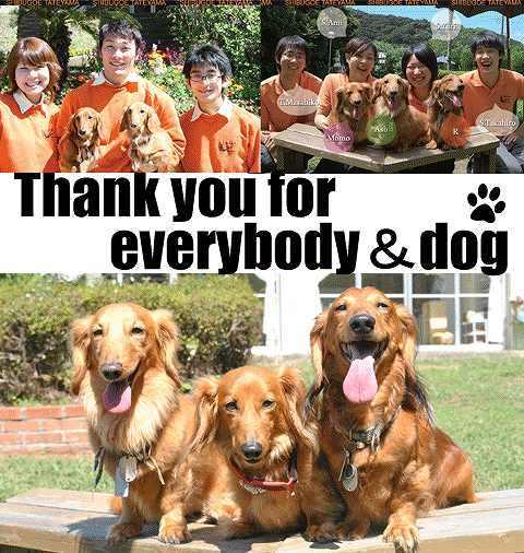 しぶごえ館山壱号館スタッフブログ-全てお客様とワンコにありがとう