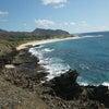 Hawaiiへ強行3泊5日 Day3の画像