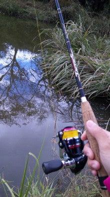 Girls Fishing!A' Go!Go!-nejire