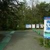 コバルトブルーの神秘的な青い池のパワーとは☆北海道の画像