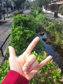 めちゃめちゃ津山さんです的なブログ-111009_122206.jpg