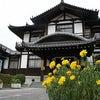 今井町(今度で何回目・・・え~っと)-その3の画像