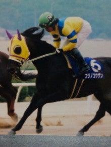 フジノコウザン福山アラブ最強馬への道 | くろべえの馬旅