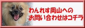 わんレス譲渡会開催のお知らせ in chouchou岡山店の記事より