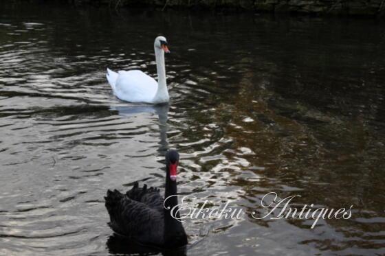 英国アンティークス・オフィシャルブログ-Swans