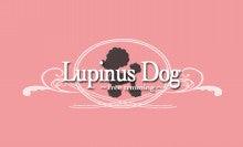 $出張トリミングLupinusDog