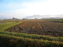 べんちゃんの米作りブログ