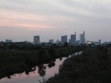 コスモちゃんの介護タクシー成長日記-高層ビルを望む