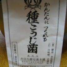 手作りの味噌
