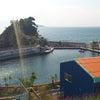 志布志湾大黒イルカランドの画像