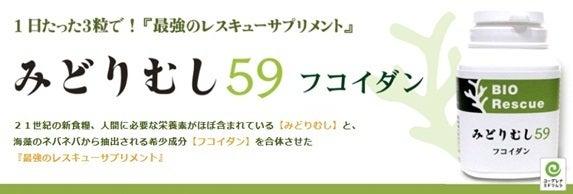 ☆なるぽろん☆ -midorimusi-kanban