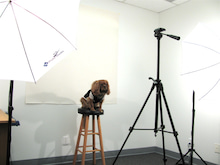 ロサンゼルス グリーンカード 永住権 ジェイ アンド エイチ イミグレーション サービス-Photo room