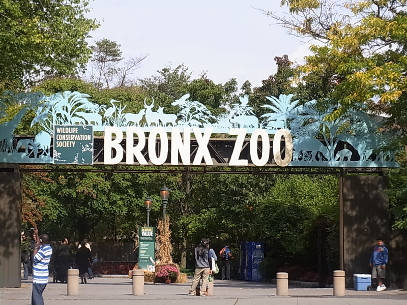 ブロンクス 動物園