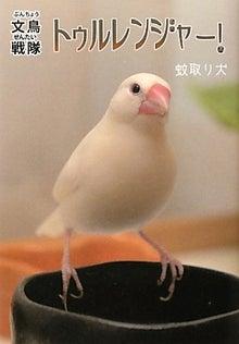小鳥な毎日2