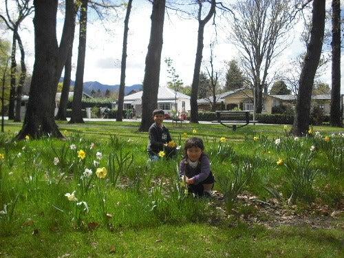 ニュージーランド短期ホームステイSapporokiwis