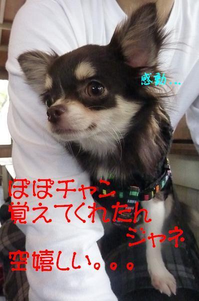 アル&ムーのブログ-空感動