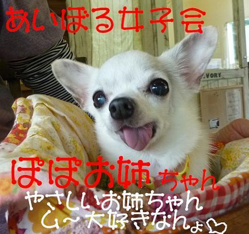 アル&ムーのブログ-ぽぽチャン