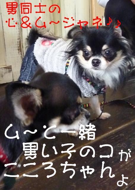 アル&ムーのブログ-黒女子会