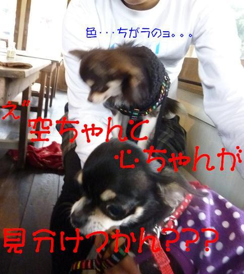 アル&ムーのブログ-え″