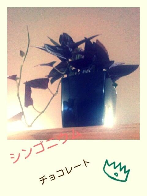 moa☆もあ☆MORE-p20111019-232203.jpg