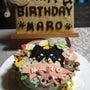 マロ7歳の誕生日♪