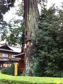 千葉県内で活動するパーソナルトレーナー五木田穣のブログ