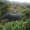 鎌倉に行って来ました。の画像