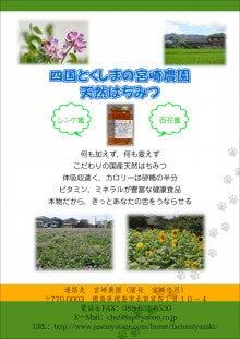 chu98xpのブログ-蜂蜜パンフ
