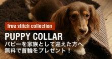 free stitch ららぽーと店BLOG