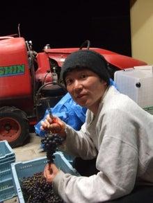 $新しい農業のビジネスモデル~日本一小さいワイナリーの挑戦~