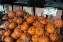 N.Y.に恋して☆-pumpkin