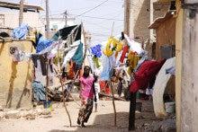 自転車世界横断!!TERU-TERU project-Wild Senegal14