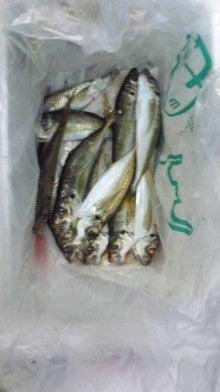 せーぼーの魚釣り通信簿-111101_213732.jpg