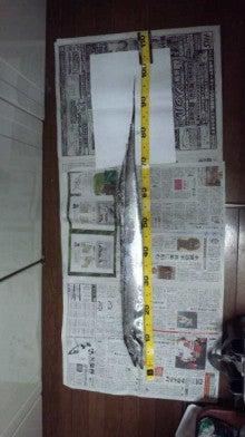 せーぼーの魚釣り通信簿-111101_213703.jpg