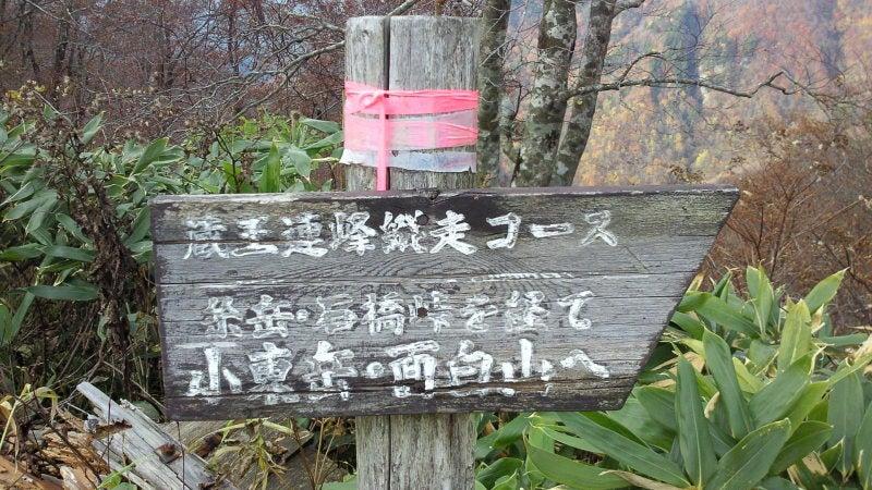 かもしかのトラウト初心者日誌-12