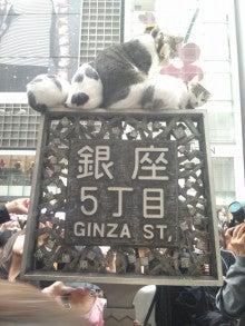 LOVE☆MOCHAブログ ~愛猫モカと趣味に生きる!主婦の日常~-111103_140143.jpg