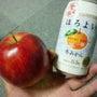 林檎と蜜柑の物語