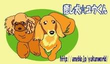 癒し犬☆ユウくん
