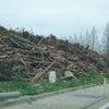 瓦礫を引き受けずに現地に焼却場を立てよ!の画像