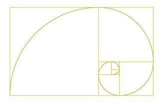 $グラフィック・Webデザイナーのネタ  |    SOHO-College-黄金比2