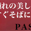 ≪パシオ キャンペーン≫の画像