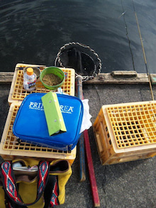 市ヶ谷の釣り堀で鯉を釣る