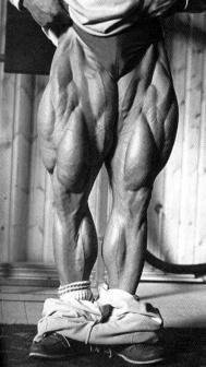 $BIGTOEの筋肉ブログ-tomleg