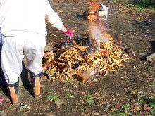 チャレンジキャンプ2011-たき火