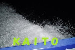 栗田竜男のブログ-KAITO 夜光虫