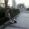 高崎・安中 犬のしつけ 外回りの画像