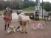 nano(ナノ) てくてく-世田谷公園