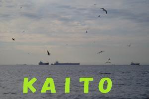 栗田竜男のブログ-KAITO  スナメリ