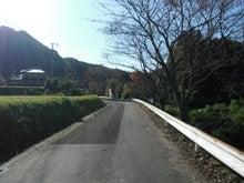 亀山湖おりきさわボート/紅葉クルーズ-した道